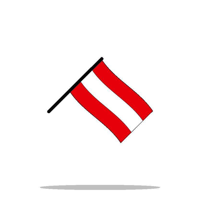 Icon Flag